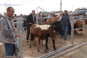 Feria de Augaxosa de Riotorto